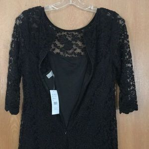 NWT Laura Petites gorgeous black soft lace dress!